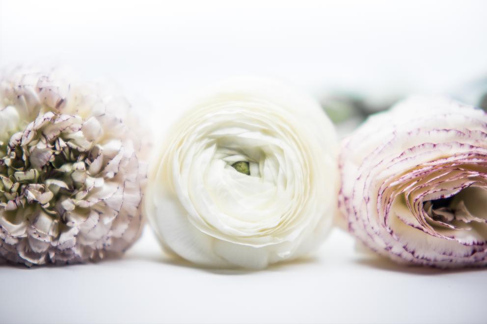 Blumen Brautstrauß